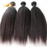 Tessuto malese non trattato diritto crespo dei capelli umani del Virgin 8A