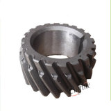 Crown Bevel Gear e Pinion Shaft