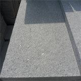 Il granito grigio G341 ha fiammeggiato le lastre per le mattonelle di pavimentazione esterne
