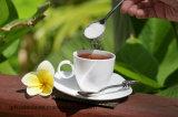 Reiner Halal organischer natürlicher StoffRa98% Stevia