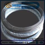 Fil de tungstène de filament de tungstène de qualité de grande pureté d'exportation