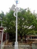 300W générateur vertical du vent avec panneau solaire pour la rue lumière