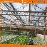 Agricultrual intensivement utilisé plantant la Chambre verte en verre