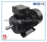 Motore elettrico a tre fasi di alta efficienza IE2 (il nero, ghisa)