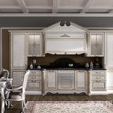 Il nuovo Cabinetry del Pantry di disegno progetta gli armadi da cucina per il cliente moderni bianchi