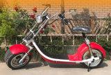 [1000و] كهربائيّة يجول درّاجة ناريّة مع [60ف/20ه]