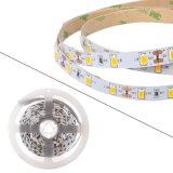 5m는 16.4FT 30의 LEDs 옥외 훈장을%s IP68 LED 지구 밧줄 빛 장비를 방수 처리한다