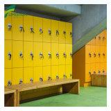 [12مّ] 12 أبواب جزء خزانة [لكترونيك] مفتاح لأنّ [جم] خزانة