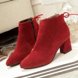 Ботинки крупноразмерное 34-45 пяток сразу женщины ботинок зимы способа остроконечные грубое Scrub ботинки Мартин оптовым