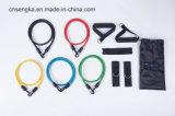 Widerstand 11PCS versieht Gefäß-Installationssatz mit Plastikhaken mit einem Band