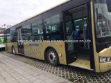 Della fabbrica bus elettrico del bus di garanzia di qualità direttamente 10m