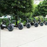 "18 ""trotinette"" elétrico poderoso das rodas 1000W Harley da polegada dois"