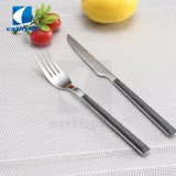 Neues Entwurf ABS Griff-Frucht-Messer-und Gabel-Besteck-Set, bewegliches Tischbesteck