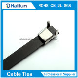 Le câble partie l'acier inoxydable couvert par PVC L collier de blocage