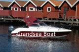 O mar e lancha Barco divertida para venda