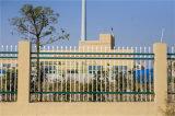Высокомарочным шикарным декоративным загородка гальванизированная садом стальная 5-3 обеспеченностью