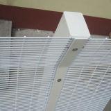 Дешево сваренный ограждать сетки подъема загородки ячеистой сети 358 материальный анти-
