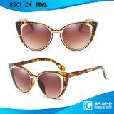 2017 lunettes de soleil en plastique de type de caractère neuf du chat 3 UV400 Vintate en stock