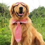 محبوبة باع بالجملة [كلوثينغ كّسّوري] وسط كبيرة كلب إنحناء رابط