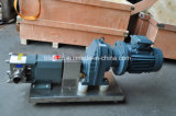 オイルのための小さい自動鋼鉄産業熱い電気ギヤポンプ