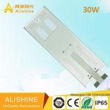 Lampe de rue à énergie solaire intégrée à LED de 30 watts avec Ce / EMC / IEC / BV / LVD / Ies