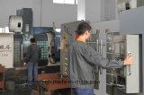 De automatische Machine van de Verpakking van de Zak Premade (MR8-200RH)