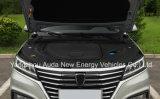 Refrescar la venta caliente SUV eléctrico del diseño con 5 asientos