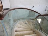 Balaustra laminata curva di vetro Tempered con il corrimano della quercia