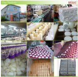 Фиолетовый свечи, безусловно светлые стойки Co. Ltd