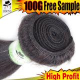 6Aインドの毛の自然でまっすぐで熱い販売