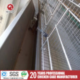Cages 2013 de couche de poulet