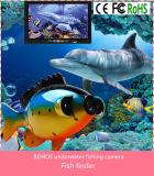 """7마리의 """" 색깔 TFT 수중 물고기 측정기 비데오 카메라 사치품은 50m 케이블/케이스 - 검정에 놓았다"""