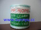 Corde de PP, PP, PP Pakcing de liage ficelle/cordon, Chaîne de PP, Jardin, garde la corde de liage