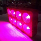 3W Chipeの赤く青い穂軸LEDはライトを育てる