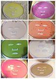 Générateur facial normal neuf de soin de masque de légume fruit de l'arrivée DIY