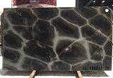 Ilusão de tartaruga azulejos polido quartzito&Brames&Bancada