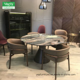 Het Dineren van het Leer van het Meubilair van de eetkamer Vastgestelde Marmeren Eettafel Beklede Stoel (DS003)