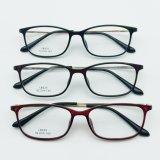 Eyeglasses de aço plásticos de Eyewear dos frames óticos do projeto novo com templo do metal
