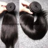 Cabelo brasileiro do Virgin do cabelo humano de Remy da qualidade superior Curly
