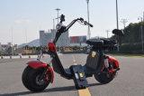 [18ينش] [بيغ وهيل] درّاجة ناريّة كهربائيّة مع [1000و] [60ف/20ه]