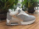 De verhoogde Toevallige Schoenen van de Sporten van Schoenen voor Vrouwen (528A#)