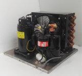 소형 에어 컨디셔너 및 제습기 220V/50Hz R134A를 위한 Purswave 1/2HP 5/9HP Qx110hjz 공냉식 압축기 압축 단위