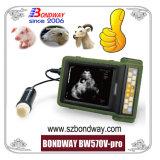 Для использования вне помещений с помощью цифрового ультразвукового сканера для сельскохозяйственных животных