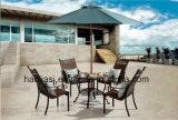 Openlucht /Rattan/de &Table Reeks van de Stoel van de Rotan van het Meubilair van de Tuin/van het Terras/van het Hotel (HS 1103C&HS 7603DT)