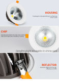 Proyector de Downlight LED de la MAZORCA del poder más elevado 10With15With30With60W de China Ce/CB