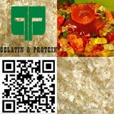 음식 Indutry를 위해 증명서를 주는 젤라틴 Halal