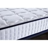 新式の熱い販売の容易なスリープホーム家具のベッドのマットレス
