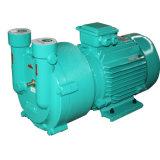 蒸気の殺菌のための液封真空ポンプ(SK-2A 0.75KW)