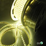 Indicatore luminoso della corda di colore LED di Shenzhen LED Expoter 5050 Sifngle