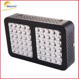 아마존 최신 600W 가장 싼 LED는 도매를 위해 가볍게 증가한다